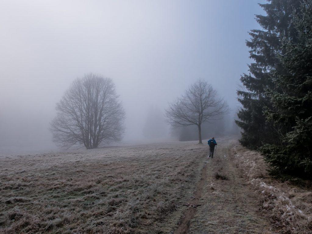 Westweg im Nebel